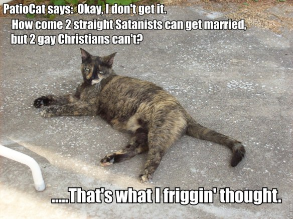 PatioCat How come can get married