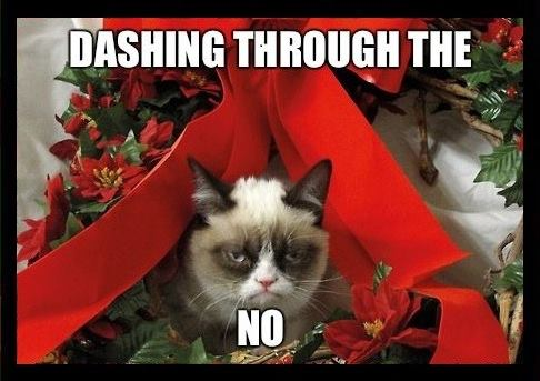 dashing through the no