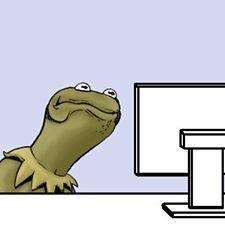Kermit sour face