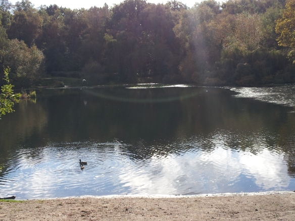 And ponds like this. Some of them are for swimming (though it was too cold to do that today).